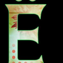 E4702f8c28ca55a84.th.png