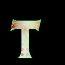 TT.th.png