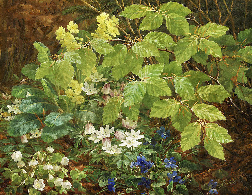 Anthonore-Christensen--A-Forest-Floor-with-Anemones-and-Violets.-1888.jpg