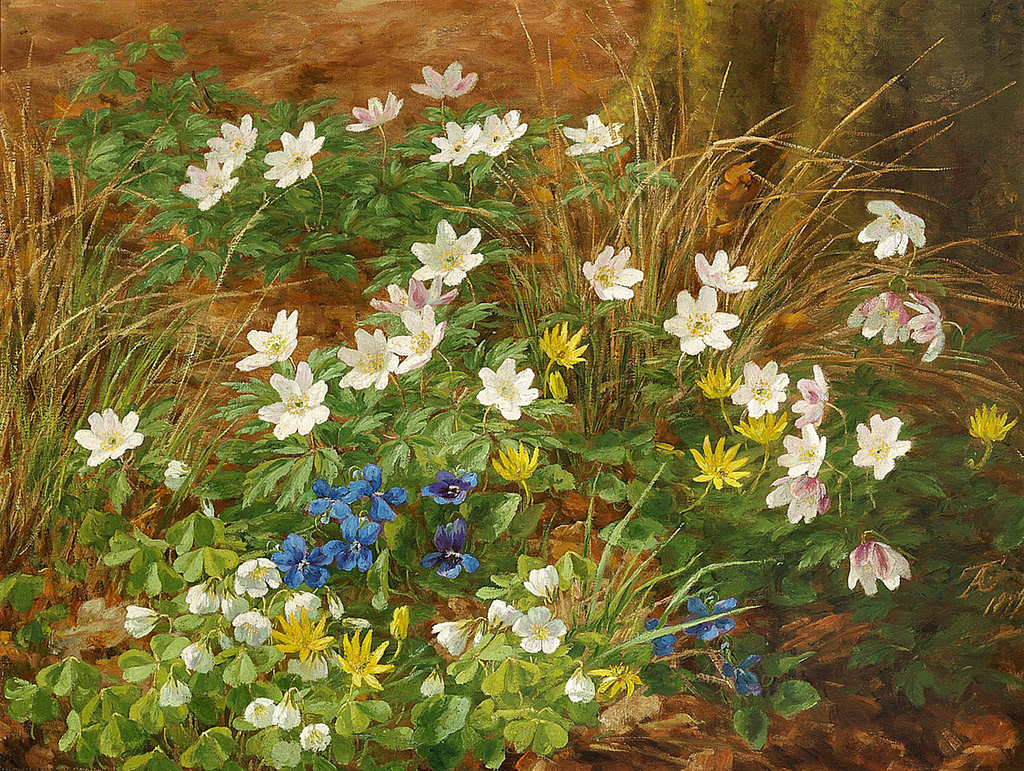 Anthonore-Christensen--A-Forest-Floor-with-Anemones-and-Violets..jpg