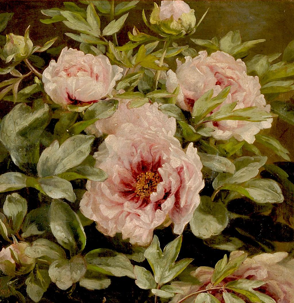 Anthonore-Christensen-Flowering-peonies.jpg