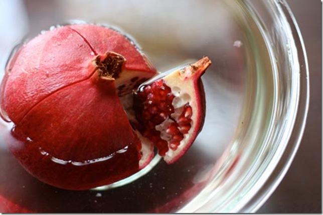 pomegranate4_3.jpg